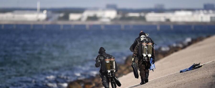 (ARKIV) Københavns Politi har i samarbejde med Forsvarets dykkere onsdag fundet endnu en arm i Køge Bugt.