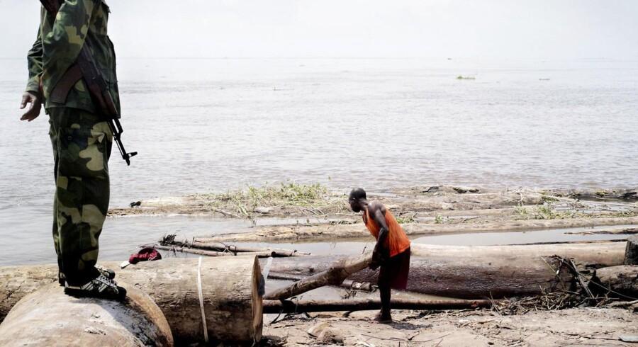 Ved Congofloden nær hovedstaden Kinshasa ankommer dyrebart tømmer fra DR Congos store skove. Tømmeret sælges typisk til udlandet. Soldater fra regeringshæren overværer arbejdet. Regeringen og hæren er dybt involveret i mere eller mindre illegal handel med råvarer og mineraler fra konfliktområder i landet.