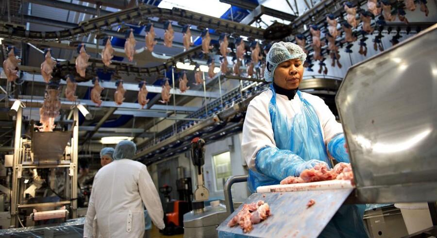 Danpo Fjerkræslagteri - Lantmännen, i Års. Kyllinger slagtes og der produceres bla. maskinsepareret kød (MS-kød).