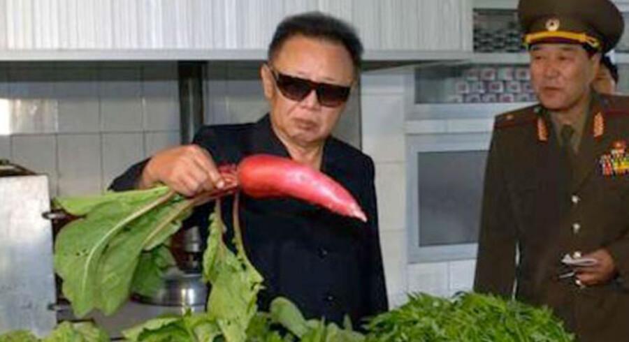 Kim Jong-Il ser på en radise. Screendump: http://kimjongillookingatthings.tumblr.com/