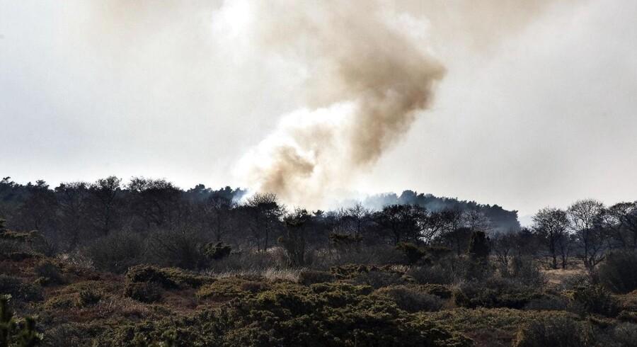 Arkivfoto: Naturbrandene denne sommer overgår de foregående års antal af naturbrande.