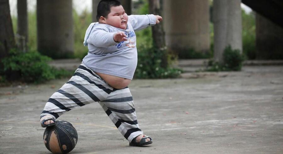 Novo håber, at man med lægemidlet Liraglutid kan »kurere« fedme.