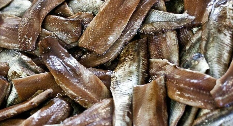 Et flertal i EUs komité for fiskeri og akvakultur har vedtaget sanktioner mod Færøerne for at hæve sine sildekvoter.