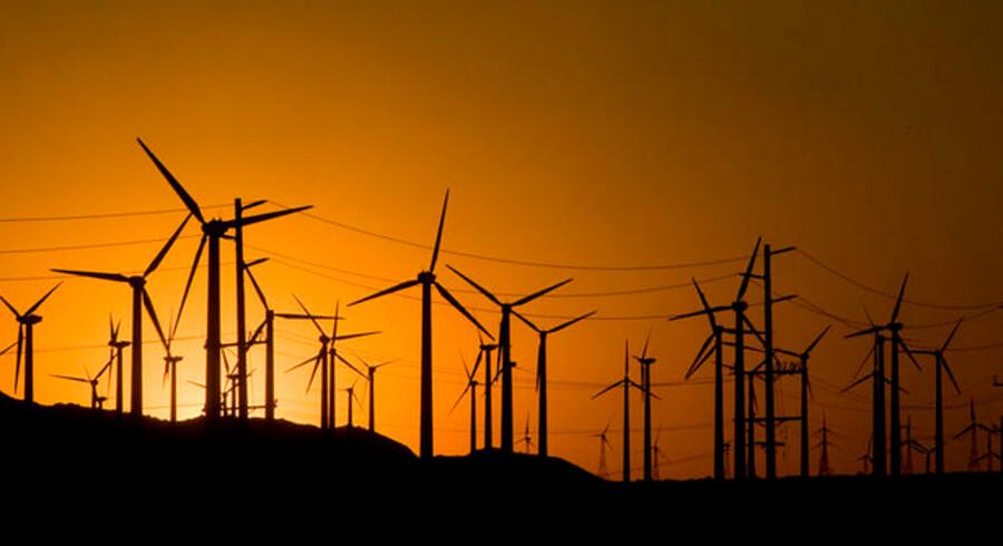 Investorernes tro på vindmøllerne fra Vestas gør aktien til den suverænt mest handlede blandt private investorer hos netmæglerne.