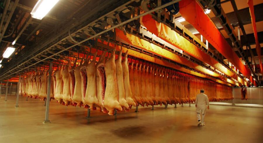 Flertallet af de omkring 11.000 andelshavere bag verdens tredjestørste slagterikoncern Danish Crown er løbet tør for penge, og inden nytår bliver det derfor besluttet, hvorvidt man skal tage skridtet fra andels- til aktieselskab.