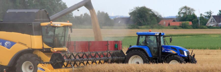 DONG, Novozymes og Danisco har kastet sig ind i kampen om de gule strå, som i disse dage høstes og presses til halmballer på markerne landet over. De har iendnu kke opgivet drømmen om at etablere produktion af anden generations bioethanol i stor skala og dermed få del i et marked for biobrændstof, der vurderes at løbe op i 150 millioner liter fra 2012.