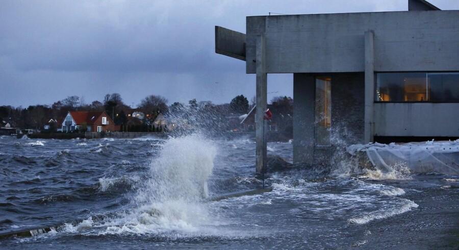 Arkivfoto fra stormen Bodil, der forårsagede store skader på Vikingeskibsmuseet.