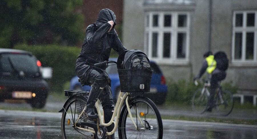 Voldsom regn kan ramme Sjælland i løbet af søndag aften. (Foto: Henning Bagger/Scanpix 2014)