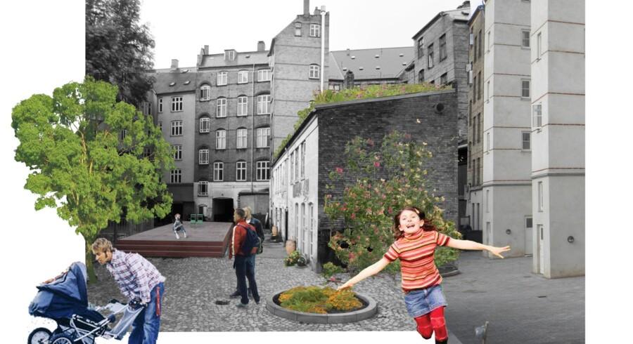 Den 100 kvadratmeter store taghave på Nørrebro pynter også set nede fra gården, selv om dens primære funktion er at fryde øjet fra vinduerne i lejlighederne omkring. Projektet stod færdigt i sommeren 2012 og blev til i et samarbejde mellem Københavns Kommune og arkitektfirmaet SBS Rådgivning A/S.