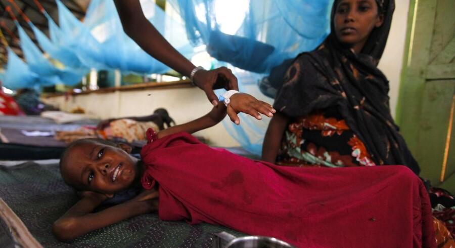 FN beder nu flyselskaber om hjælp til at fragte nødhjælp til Afrikas Horn. Flere har lagt lastrum til.