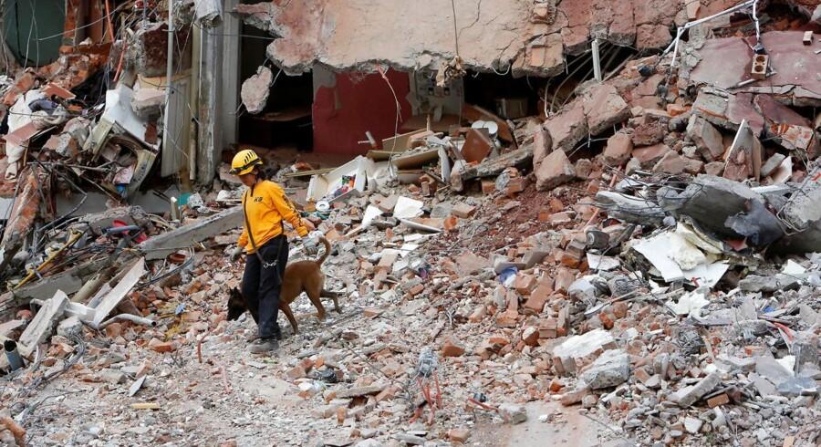 I Mexico står man normalt ikke sammen, men det har jordskælv ændret på, siger dansk ambassadør i landet.