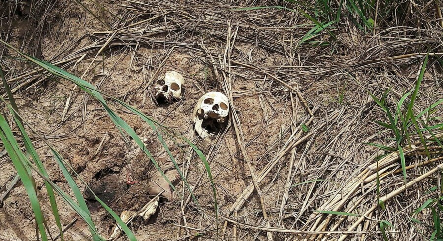 Mindst 80 massegrave er nu blevet fundet i Kasai-regionen, hvor der har været en stor stigning i volden mellem sikkerhedsstyrker og en stammemilits. Kranierne her menes at stamme fra nylige kampe i provinsen mellem regeringshæren og Kamuina Nsapu-militsen.
