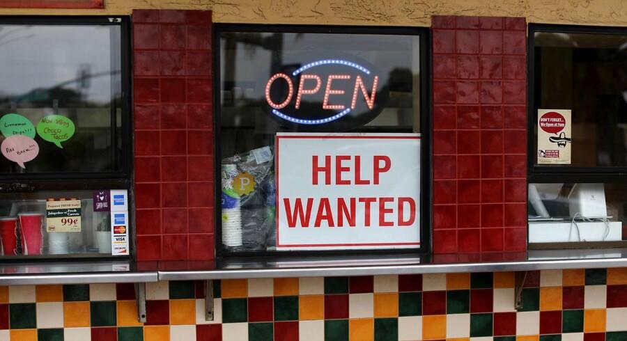 Arbejdsløsheden har været nedadgående i alle medlemslande det seneste år, bortset fra Finland.