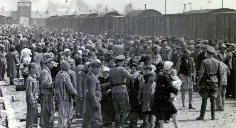 Billede taget 27. maj 1944 i Oswiecim viser tyske nazisoldater sortere fanger ved ankomsten til KZ-lejren Auschwitz-Birkenau. Foto: Scanpix