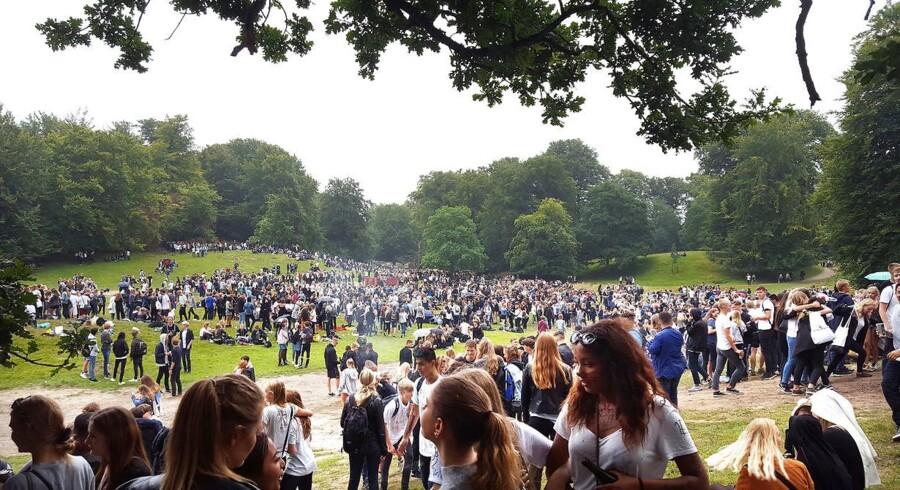 Sidste års såkaldte puttefest i Dyrehaven nord for København.