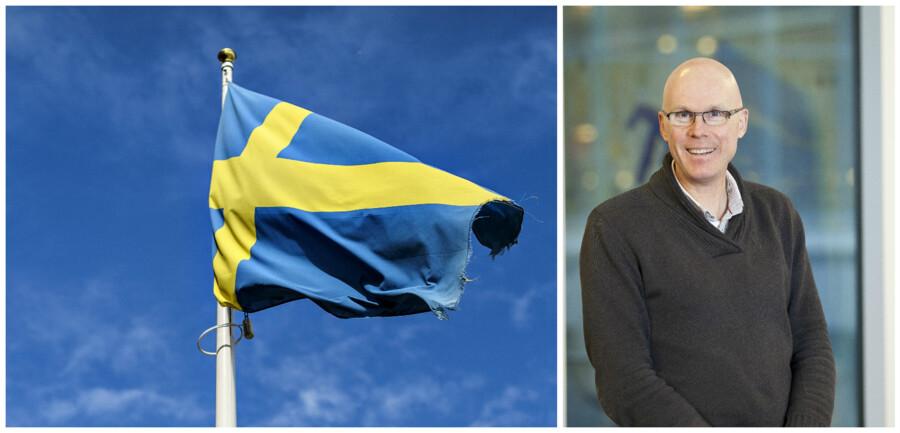 Ifølge professor i statsvidenskab ved Gøteborgs Universitet Jonas Hinnsfors er den hidsige debat om svenskhed og svenske værdier et symptom på noget langt dybere. Den svenske velfærdsstat har nået et trin, hvor den ikke udvikles mere og måske endda er ved at blive rullet tilbage, mener han.