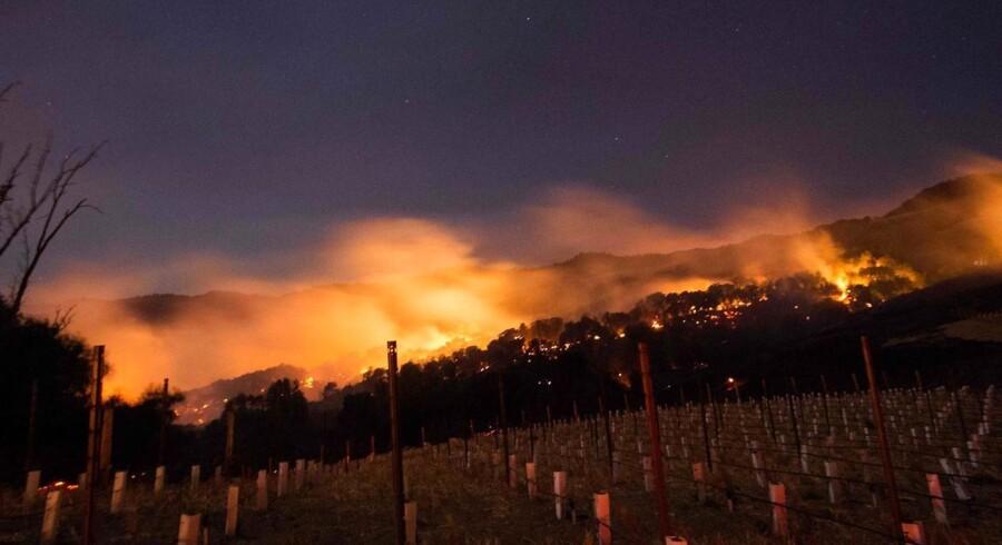 Ilden brænder på bakkeskråning i Napa, Californien, den 9. oktober 2017.