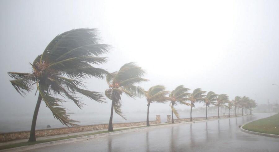 Irma ventes at forårsage oversvømmelser på op til tre meter i dele af Cuba, inden den søndag morgen sætter kursen mod Florida.