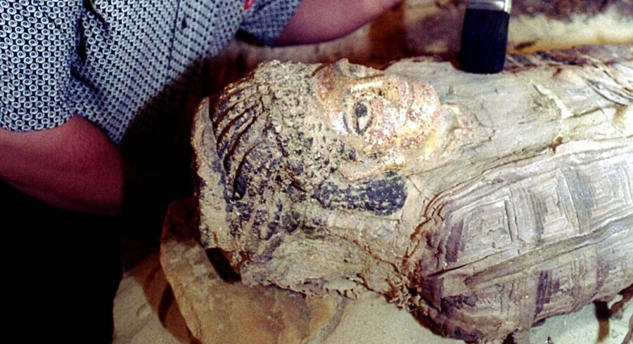Arkivfoto. Arkæologer i Egypten har fundet 17 mumier i Minya-provinsen. an/Photo by Aladin Abdel Naby REUTERS