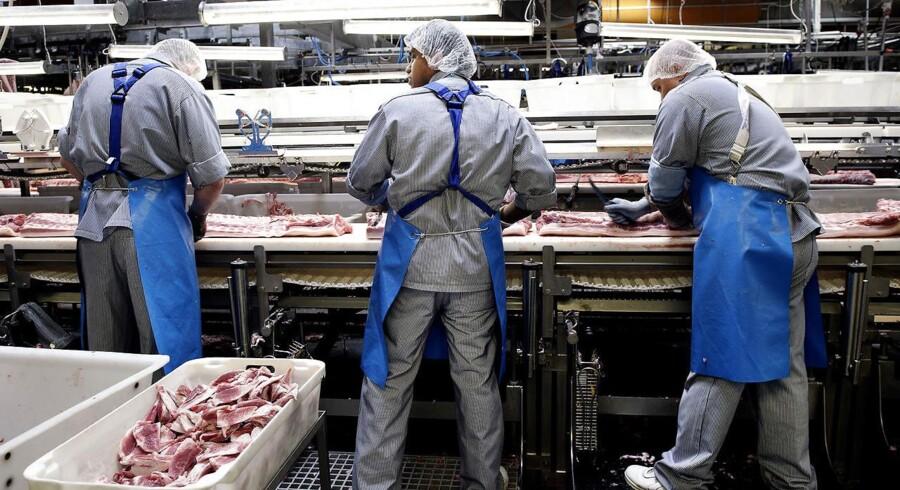 """""""Ingen vil arbejde"""", siger Fox News-vært om Danmark: Men beskæftigelsen er faktisk højere end i USA. Her ses Danish Crown-slagteri i Ringsted."""