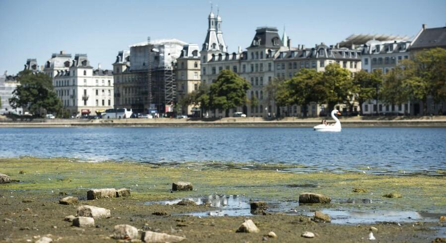 De varme somre kan blive endnu varmere i fremtiden. Her er det Peblinge Sø i København, hvor vandstanden er noget lavere end normalt.