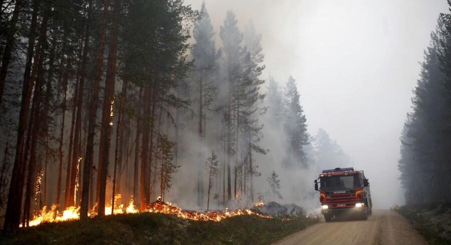 Senest Sverige var ramt af massive skovbrande, var i 2014, hvor en storbrand i Västmanland dækkede 14.000 hektar. Denne gang er det dog værre. Sent torsdag aften vurderede myndighederne, at de 57 brande hærgede et areal på 20.000 hektar.