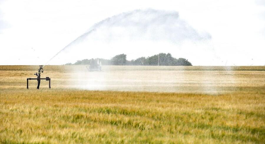 Landbruget har udsigt til den dårligste høst i årtier, og det bliver dyrt for de landmændene i Nordeuropa.