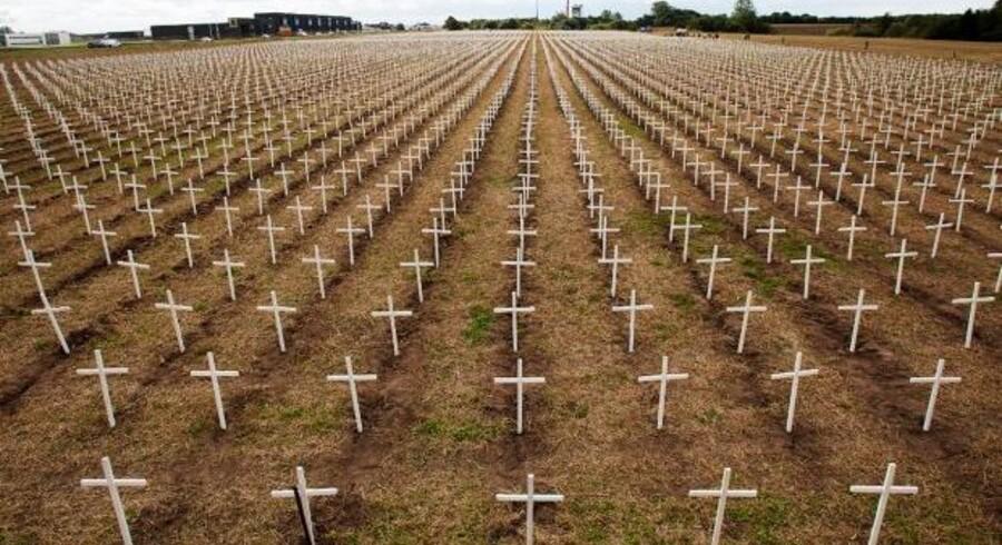 16.000 kors er opstillet langs motorvej E45 i Østjylland.
