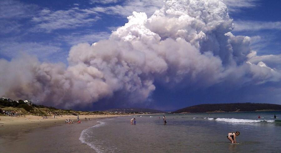Røgen fra de kraftige skovbrande, der hærger kronprinsesse Marys hjemstat Tasmanien, kan ses over store de af den australske ø. Her ses de nærmest tordenagtige røgskyer fra stranden Carlton, ca 20 kilometer øst for hovedstaden Hobart.