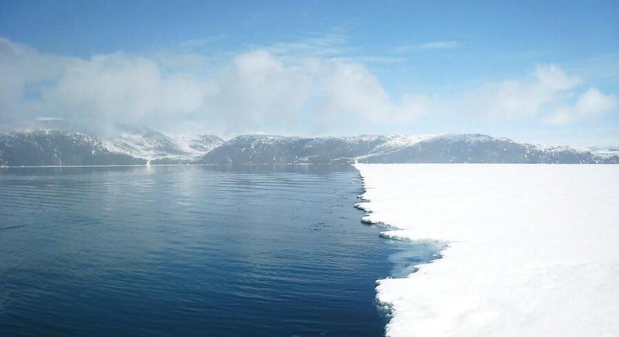 Godthåbsfjorden ved Nuuk, Grønland
