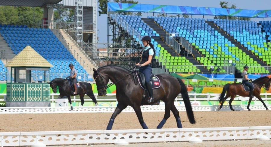 Fanebærer Annika Lykke Dalskov Risum viste hesten Aros A Fenris fornemt frem ved para-OL i Rio. Free/Dansk Ride Forbund