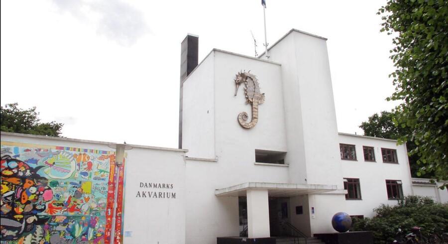 Danmarks Akvarium i Charlottenlund