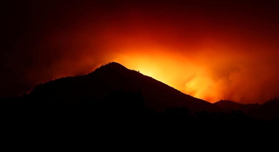 Skovbrandene har forårsaget store ødelæggelser i Californiens vindistrikter. Omkring 3500 huse og ejendomme er forvandlet til aske.