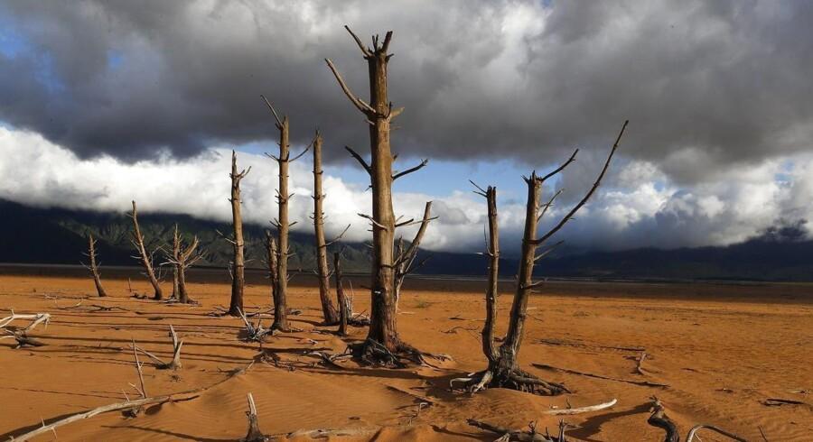Arkivfoto. Cape Town i Sydafrika rammer »Dag Nul« 12. april. Så er det slut med vand i haner, brusere og toiletter.