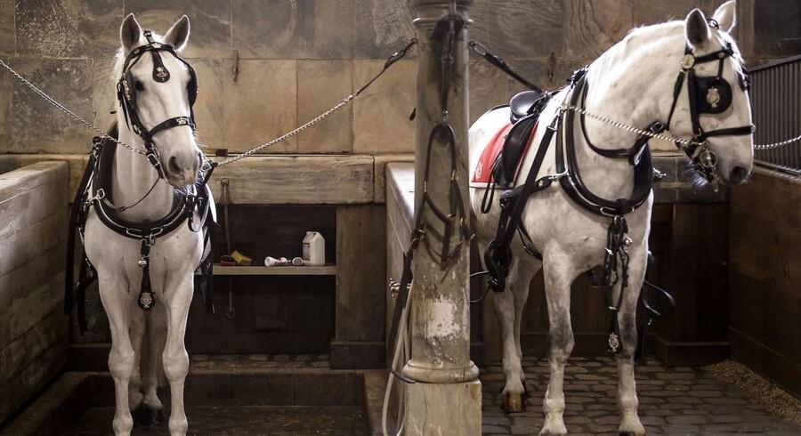 Arkvifoto: To heste er natten til fredag brændt inde i en lade på Sønderlandsvej ved Ikast.