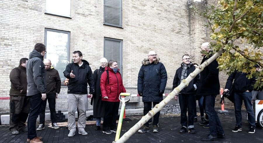 Fremover kan københavnere plante et træ på Københavns Kommunes regning. Borgmester Morten Kabell (EL) var tilstede, da det første træ blev plantet i en beboerforening på Nørrebro.