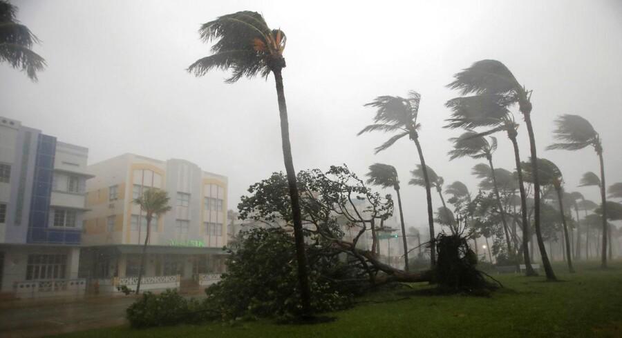 Orkanen Irma har ramt USA - her South Beach i Miami.