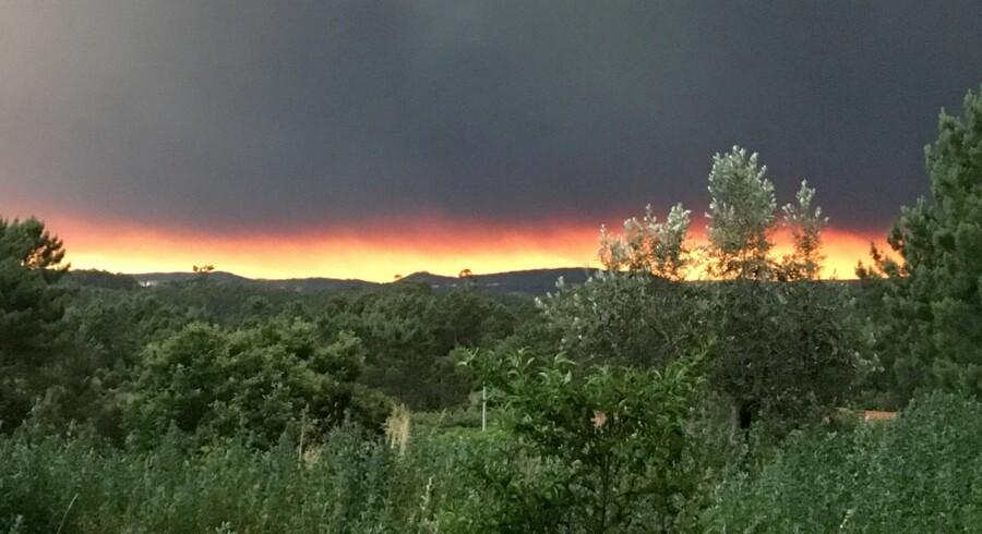 Røg stiger op fra en af flere skovbrande i Portugal lørdag. Foto er fra den centrale del af landet. Mindst 24 mennesker meldes omkommet. Reuters/Staff