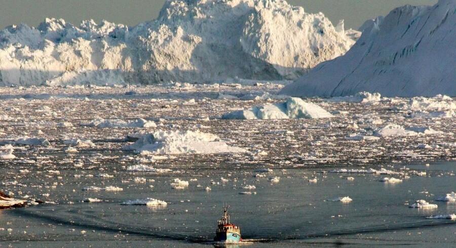 Denne sommer har budt på de højeste temperaturer nogensinde målt på kloden - og i Grønland.