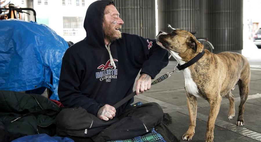 André Christiansen er to gange på to måneder blevet opkrævet penge for at sove på gaden i København. Her ses han med sin hund, Odin.