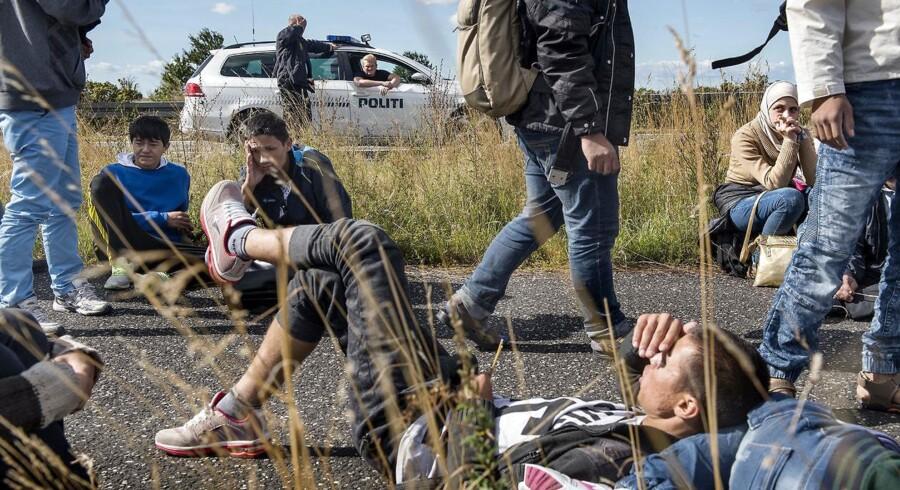 Flygtninge på Sydmotorvejen ved Rødby i september 2015.