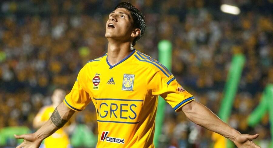 ARKIVFOTO af fodboldstjernen Alan Pulido