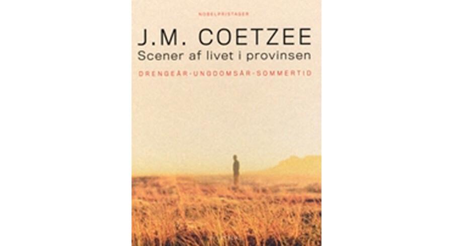 J.M. Coetzee, »Scener af livet i provinsen Drengeår – Ungdomsår – Sommertid«