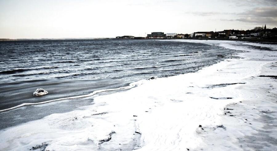 Vinterbadning ved Holbæk Fjord fotograferet mandag den 4. januar 2016.