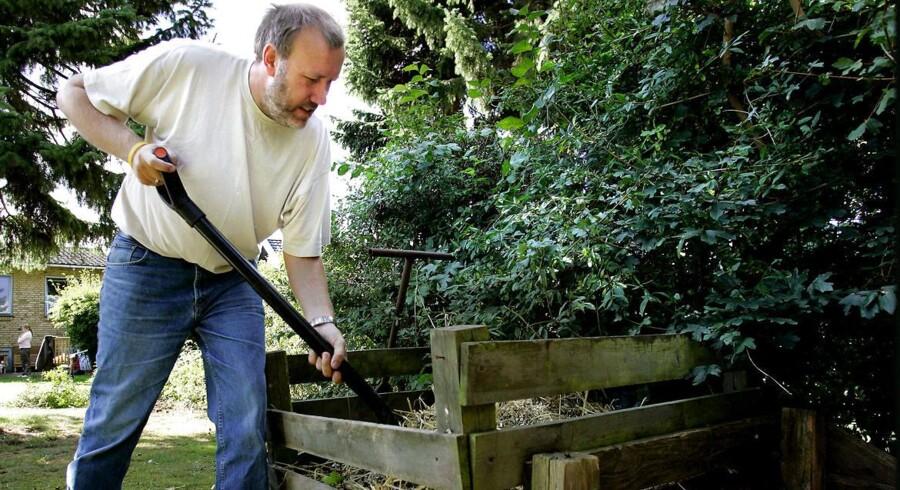 """Manden på billedet her har intet med """"kompostsygen"""" i Skotland at gøre, men haveejere opfordres generelt til at være grundige med hygiejnen, når de har været i haven. Arkivfoto: Bax Lindhardt"""