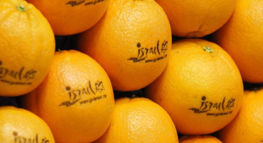 Appelsiner fra en plantage i Israel. Her mærket »Israel« - dog til ære for en udstilling i Berlin tidligere på året.