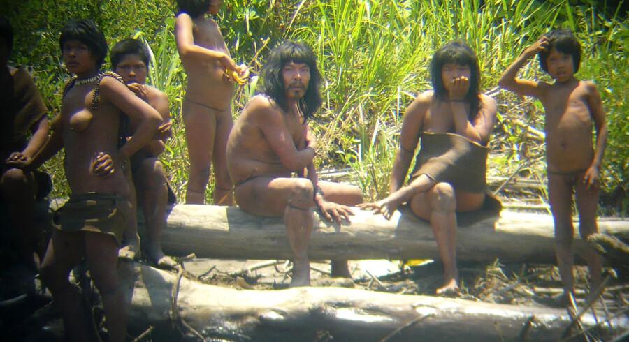 Et spansk arkæolog på ekspedition i Perus jungle har taget dette enestående billede af en såkaldt ukontaktet indianerstamme.