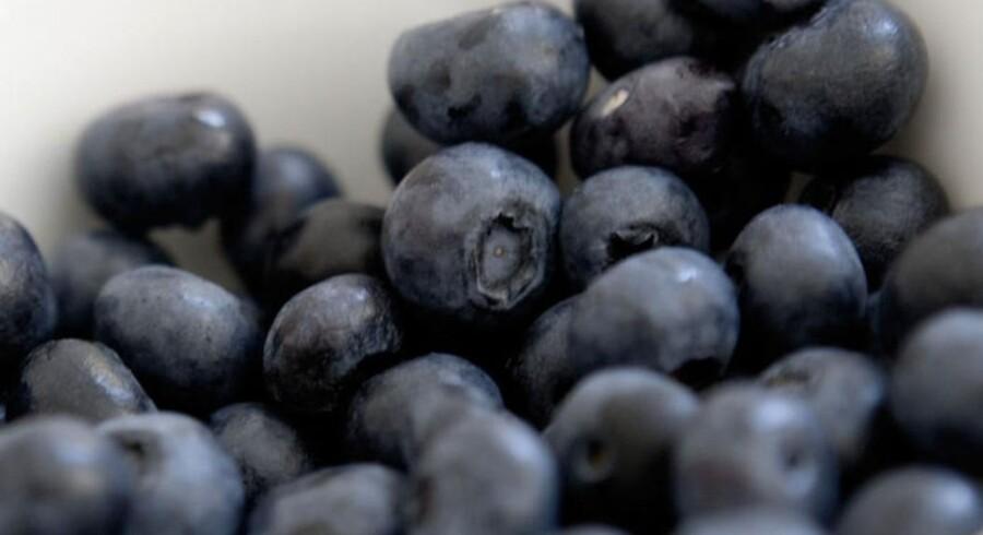 Blåbær er blandt de fødevareemner, der er blevet udråbt som ekstrasunde, selvom blåbær i følge ernæringsekspert Christian Bitz hverken er mere eller mindre sunde end andre mørke bær.
