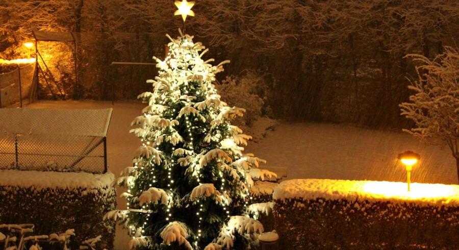 Sådan så julen ud i 2009, og også sidste år havde vi hvid jul i Danmark. Det skal vi dog ikke sætte næsen op efter i år.