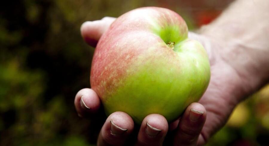 Forskere fra Københavns Universitet har fundet endnu en god grund til at spise frugt og grønt: De indeholder nemlig masser af C-vitamin, som menes at nedsætte risikoen for hjertekarsygdomme og tidlig død.